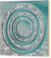 Seabed Circles Wood Print