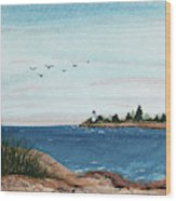 Seagulls Over Lighthouse Cove Wood Print