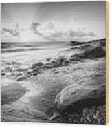 Seashells On The Seashore In Black And White Wood Print
