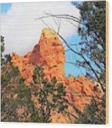 Sedona Adobe Jack Trail Blue Sky Clouds Trees Red Rock 5130 Wood Print