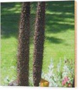 Seed Stalks 2 Wood Print