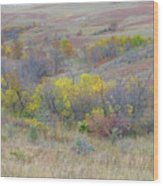 September Perfection On The Western Edge Wood Print