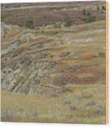September Reverie In Dakota West Wood Print