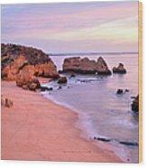 Serene Pastel Shores Wood Print