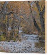 Serene Stream In Autumn Wood Print