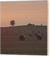 Setting Sun And Hay Bales Wood Print
