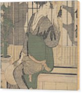 Shadows On The Shoji Wood Print