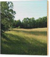 Shadowy Field Wood Print