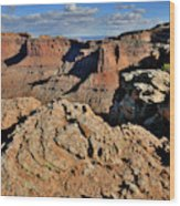 Shafer Canyon In Canyonlands Np Wood Print