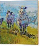 Sheep And Lambs In Bright Sunshine Wood Print