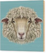 Sheep Portrait. Illustrated Portrait Of Wood Print