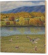 Shenandoah Valley Hawk Wood Print
