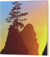 Shi Shi Sea Stacks Wood Print