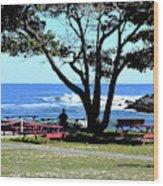 Ship Cove Park Wood Print