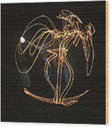 Shirtless Artist Pablo Picasso, W Wood Print