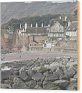 Sidmouth Sea Front Wood Print