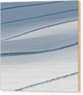Ski Runner . . Wood Print