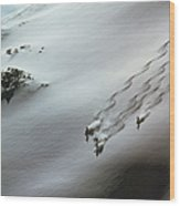 Skier Moving Down In Snow On Slope Wood Print
