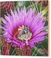 Skipper On Cactus Bloom Wood Print