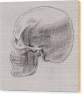 Skull Study Profile Wood Print