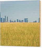 Skyscrapers Arising From Grass Wood Print