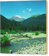 Small Stream Foreground The Rockies Wood Print