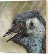 Smiley Face Emu Wood Print