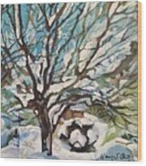 Snow Covered Cherry Tree Wood Print