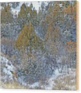 Snow-dusted In West Dakota Wood Print