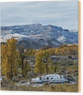Snow Falls On Autumn Wood Print