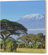 Snow On Top Of Mount Kilimanjaro In Wood Print