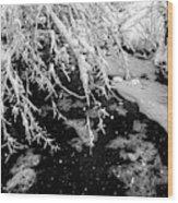 Snow Pa 10-013 Wood Print