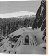 Snow Trellis Wood Print