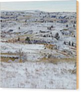 Snowy Slope County Wood Print