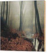 Sounds Of Silence Wood Print