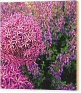 Spring Flowers In Garden Wood Print