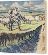 Spring In The Bellet Fruit Orchard Wood Print