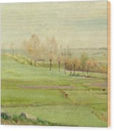 Spring Landscape With Light Green Fields Wood Print