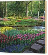 Springtime Keukenhof Gardens With Wood Print
