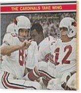 St. Louis Cardinals Sonny Randle And Qb Charley Johnson Sports Illustrated Cover Wood Print