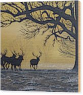 Stags At Dawn Wood Print