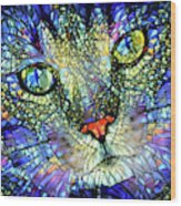 Stained Glass Cat Art Wood Print