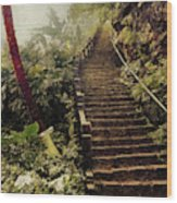 Stairway To Yesterday Wood Print