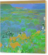 Steamboat Rock 03 Wood Print