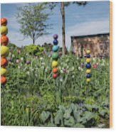 Sticks With Colorful Balls In A Garden Wood Print
