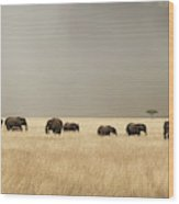 Stormy Skies Over The Masai Mara With Elephants And Zebras Wood Print