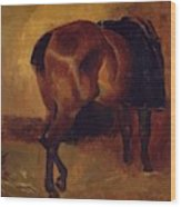 Study For Bay Horse Seen From Behind Wood Print