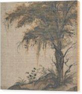 Study Of A Tree Wood Print