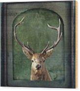 Stuffed And Mounted Wood Print
