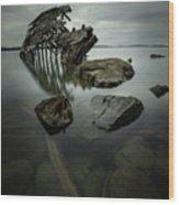 Sturgeon Bay Shipwreck In November Gloom Wood Print